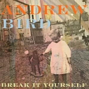 andrew bird break it yourself