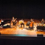 The Magnetic Fields-2