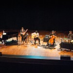 The Magnetic Fields-3