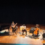 The Magnetic Fields-3 (2)