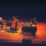 The Magnetic Fields-4