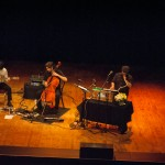 The Magnetic Fields-5