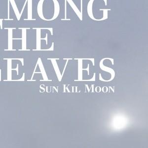 Sun Kil Moon - Among the Leaves