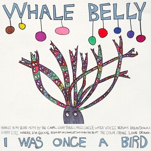 whale belly i was once a bird