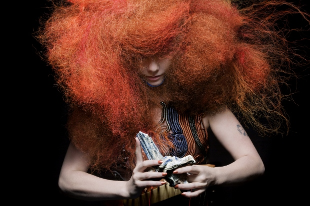 bjork_press_cosmogony (620x413)