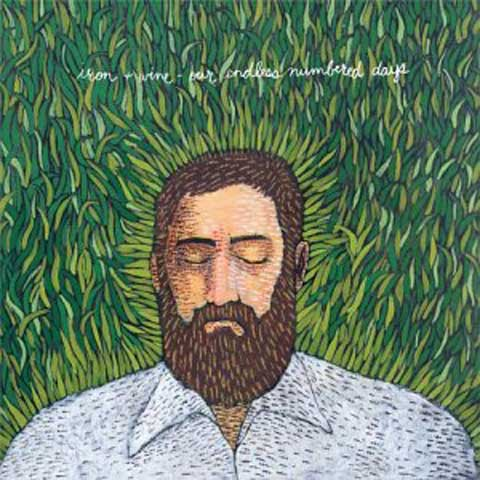 Iron + Wine - Our Endless Numbered Days